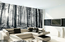 Wall mural giant size Black & white forest photo wallpaper office living room