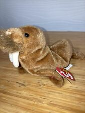 ty beanie baby paul the walrus 1999 both tags