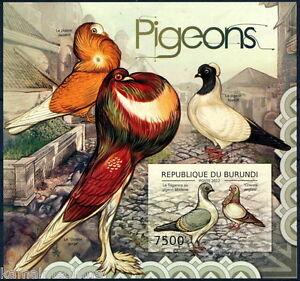 BURUNDI 2012 MNH Imperf 1v MS, Pigeon, Birds