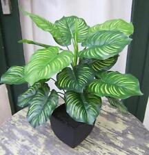 Künstliche Calathea Pflanze im Topf ca. 45cm -Top Qualität