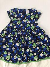 Gymboree Flower Showers Line Adorable Dress Euc Size 2T