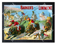 Historic Barkers for Veterinary medicine 1890s Advertising Postcard