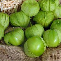 Tomatillo   Husk Tomato   Physalis philadelphica   10 Seeds   (Free Shipping)