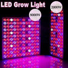 Luz crescimento LED 8000W Full Spectrum hidropônico Flor para plantas, ambiente interno crescendo Bloom