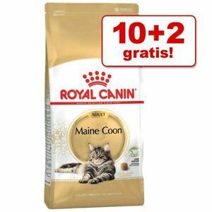 Royal Canin Maine COON  Adult  Katzenfutter  10 kg + 2 Kg GRATIS