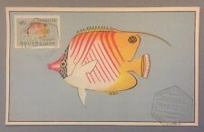 Unusual Mozambique Postal History : Maximum card Stamp 1952 : Coral Fish $10 #01