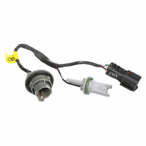 OEM NEW Rear Tail Light Lamp Socket and Wire 17-19 Kia Sportage 92480-D9020