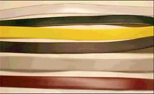 BRAND NEW! Jet Ski Waverunner  SEAT STRAP - 4 COLORS!