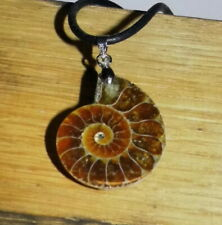 Halskette Ammonit Necklace Fossil Fossilien Anhänger Lederband