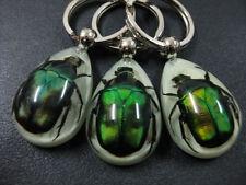 16pcs new items amulet green beetle embedded teardrop glow in dark keychain
