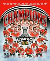 """Chicago Blackhawks 2015 Stanley Cup Champions Team Photo (Size: 16"""" x 20"""")"""
