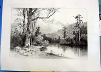COLORADO MOUNTAIN & LAKE FOREST SCENE ~ Old 1888 Original Art Print Etching RARE