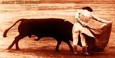 "Bullfighting Vintage Poster #30 - Canvas Art Poster 12""x 24"