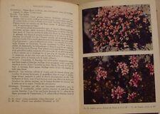 CORREVON Aymon - ROCAILLES FLEURIES - 1947