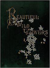 Beautiful Wild Flowers of America1882Hardcover