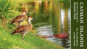Cayman Isl Stamps 2020 MNH Queen Elizabeth II Botanic Park Ducks 10v S/A Booklet
