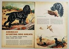 1955 Magazine Picture Cocker Spaniel American Sport Dog Drawn by James Lockhart