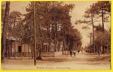 cpa 33 - LA TESTE DE BUCH (Gironde) CAZAUX Avenue du CAMP Ed. Pierre MAS