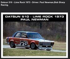 Datsun 510 - Lime Rock 1973- Paul Newman- Bob Sharp Racing Car Poster WOW!!!
