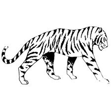 TIGER WALKING PROUD  CAR DECAL STICKER