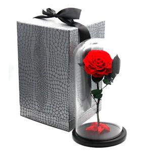 Eternal Real Flower Forever Rose Valentine Anniversary Glass Dome Gift box
