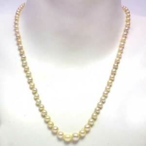 Vintage graduated cream Akoya pearl necklace on 14k gold clasp