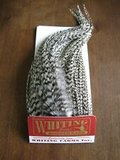 New listing Fly Tying-Whiting Farms Bugger Pack Grizzly