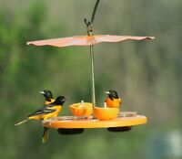 Kettle Moraine Recycled Super Oriole Bird Feeder Fruit Jelly Mealworms Oranges