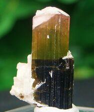 Pink & Grün Turmalin Kristall Mineral Probe 30 Karat aus Gilgit Astaknala