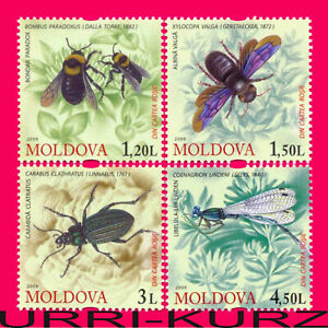 MOLDOVA 2009 Nature Fauna Rare Insects Bumblebee Carpenter-Bee Beetle Dragonfly