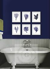 Navy Blue Home Decor Wall Art Prints set of 6 Sea coral Beach Decor