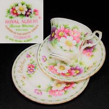 Royal Albert 1970 October Cosmos Vintage English Bone China Cup Saucer Trio Set