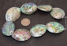 Paua Abalone Large Shell Beads New Zealand 8 piece strand (10185)