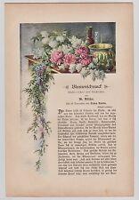 Original 1900-1949 Originaldrucke (1800-1899) mit Blume & Pflanze