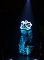 Led light wool Southern Chinese Folk art Lion Dance mascot Costume for two adult