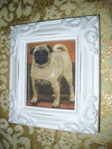 TAN PUG DOG 3 1/2 X 4 1/2 white framed animal picture Victorian style art print