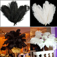 10-50 Pack 25-35cm Ostrich Feathers Plume Craft Centerpiece Wedding Party Decors