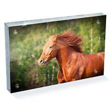 "Magnificent Running Horse Photo Block 6 x 4"" - Desk Art Office Gift #15738"