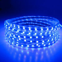 SMD3014 LUZ CINTA TIRA FLEXIBLE LED AC220V 60 LED/M IMPERMEABLE - AZUL