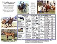 Horse Racing SECRETARIAT Triple Crown winner picture photo pedigree Xmas Gift