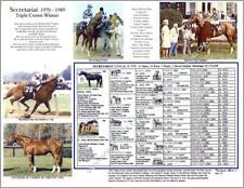 Horse Racing SECRETARIAT Triple Crown winner picture photo pedigree