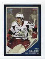 2013-14 Grand Rapids Griffins (AHL) Mitch Callahan (Augsburger Panther)