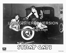 "The Stray Cats 10"" x 8"" Photograph no 11"