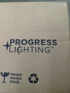 Progress Lighting Gulliver 1-Light Graphite Drum Pendant with Weathered Gray Woo