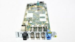 Evertz 7707EO13-3G 3G/HD/SD Electrical to Optical Converter 3RU Backplane