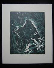 1946 Original Bernard Brussel-Smith Wood Engraving Jungle Limited A/P Excellent