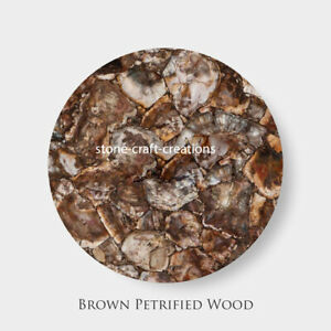 Beige Petrified Wood Table Top Counter Top Healing Wood for Home and Office Deco