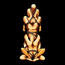 "HIRSUTE PURSUIT feat. BOYD RICE Boyd Keeps Swinging 12"" VINYL 2012"
