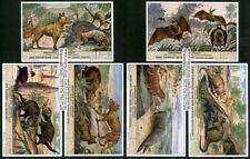 Mammals Of Australia 6 Nice c60+ Y/O Vintage Trade Ad Cards