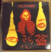 WAILIN STORMS One Foot In The Flesh Grave LP NEW red vinyl post-punk w/download